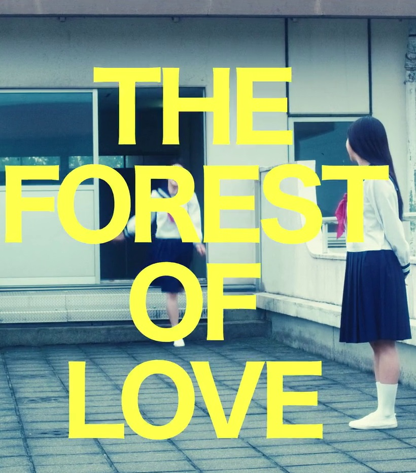 the-forest-of-love